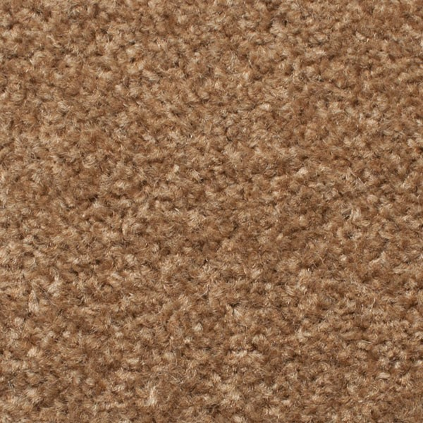 Dark Beige Carpet Ecarpets Save 163 163 163 S On Dark Beige Carpet