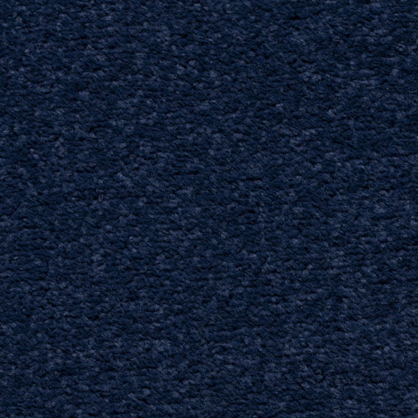 Buy Navy Blue Carpet Cheap Navy Blue Carpet Online