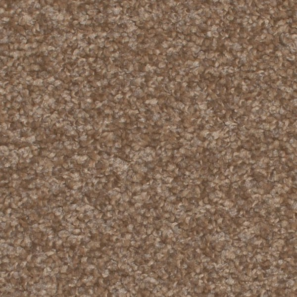 800 Dark Beige Lava Carpet 163 163 163 S Off 800 Dark Beige Lava