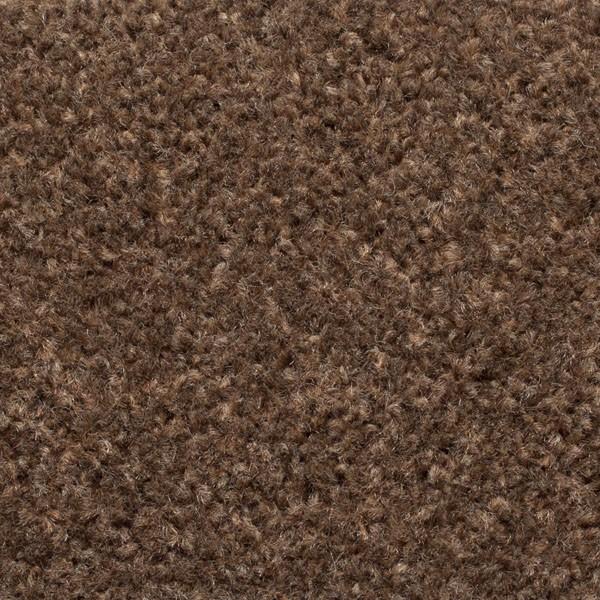 Light Brown Carpet Ecarpets Save 163 163 163 S On Light Brown Carpet