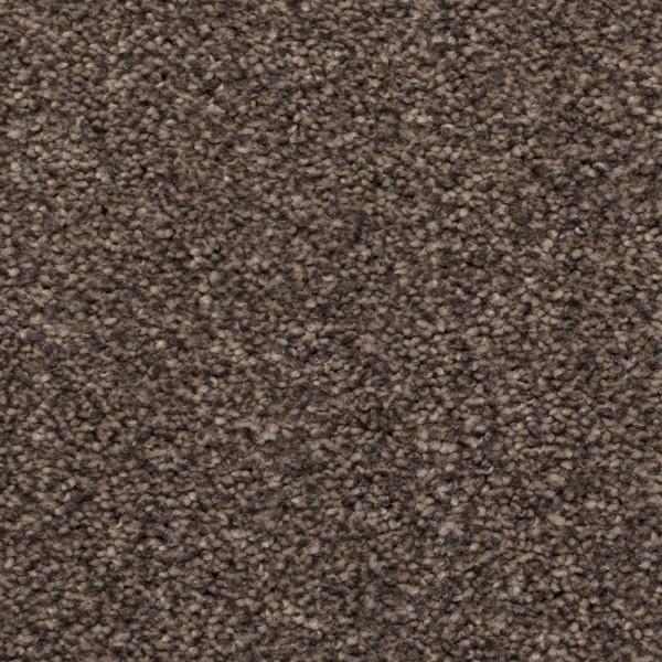 855 Dark Brown Ecarpets Save 163 163 163 S On 855 Dark Brown Today